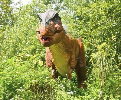 DWD162 T-rex
