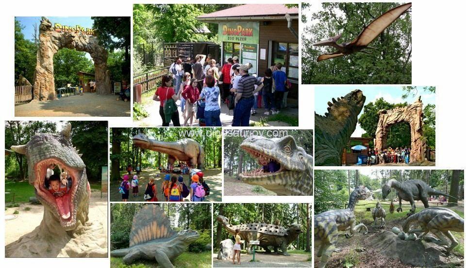 Cooperate-Dino-park