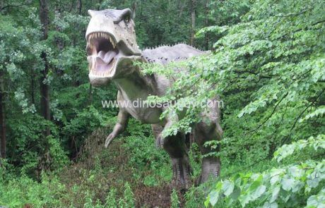 DWD1340-Adult-Tyrannosaurus-Rex