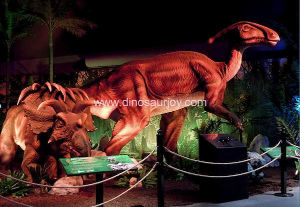 DWD1447-Parasaurolophus