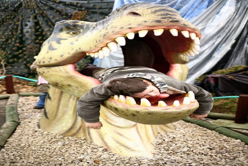 DWE027 Dino head
