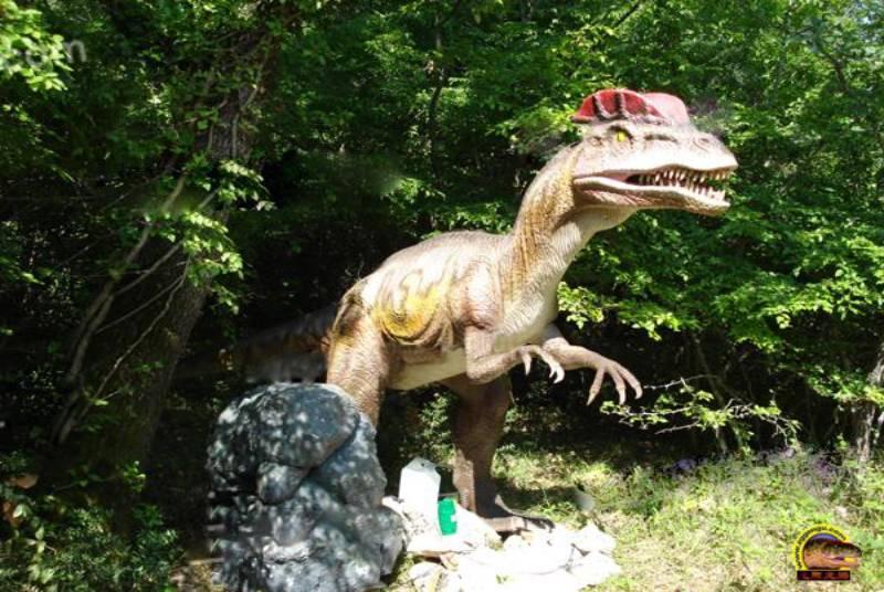 Watering Dilophosaurus