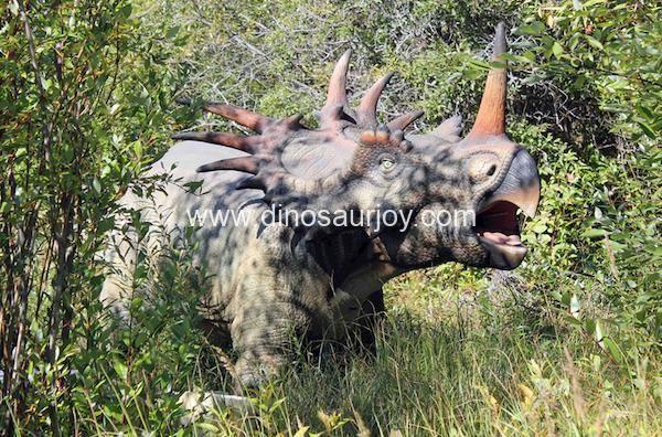 DWD1331 Adult Styracosaurus