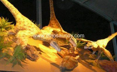 DWD1334 Velociratpos eatting food
