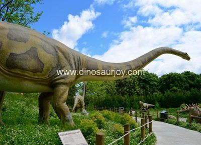 DWD1472 Huge Mamenchisaurus