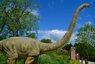 DWD1481 Big Omeisaurus