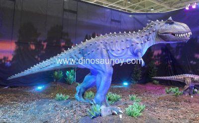 DWD1492 Young Carnotaurus