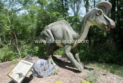 DWD1506 Hypacrosaurus