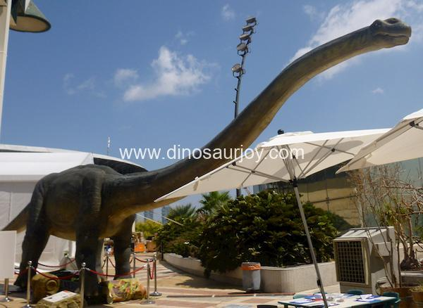 DWE1473 Big Mamenchisaurus