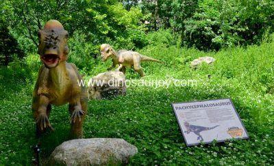 DWE1479 Pachycephalosaur