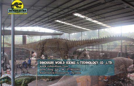 Diplodocus Fossil